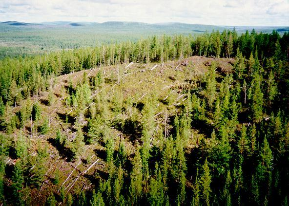 Mesto-padeniya-tungusskogo-meteorita